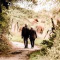 会社員や公務員のための老後資金対策(退職金、年金)