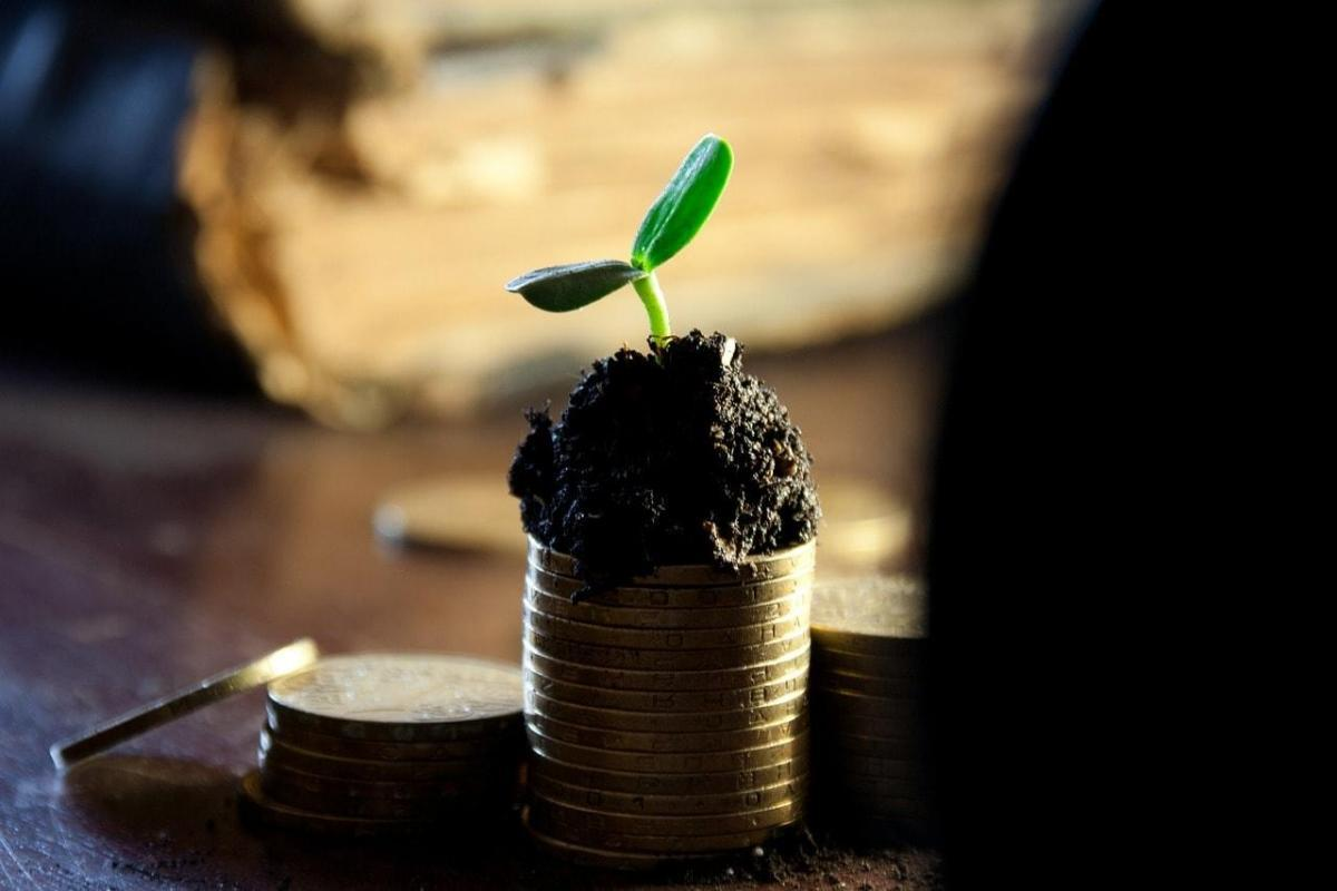 配当金や株主優待は損