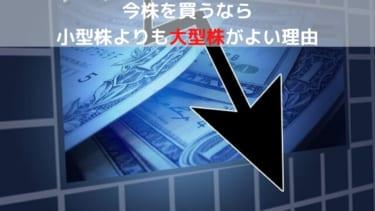 小型株・新興株より大型株がよい理由